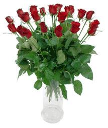 Kıbrıs çiçek , çiçekçi , çiçekçilik  11 adet kimizi gülün ihtisami cam yada mika vazo modeli