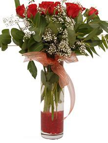 9 gül sevdiklerinize  Kıbrıs ucuz çiçek gönder