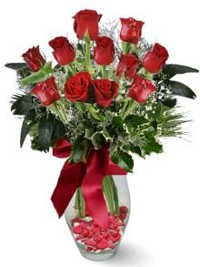 9 adet gül  Kıbrıs internetten çiçek siparişi  kirmizi gül