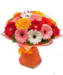 Renkli gerbera buketi  Kıbrıs çiçek online çiçek siparişi