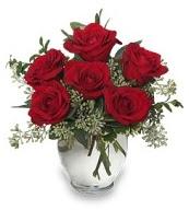 Vazo içerisinde 5 adet kırmızı gül  Kıbrıs internetten çiçek satışı