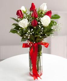 5 kırmızı 4 beyaz gül vazoda  Kıbrıs 14 şubat sevgililer günü çiçek