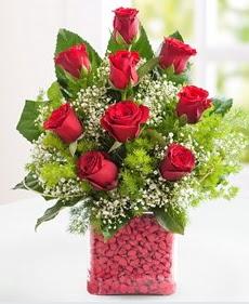 Cam içerisinde 9 adet kırmızı gül  Kıbrıs internetten çiçek siparişi