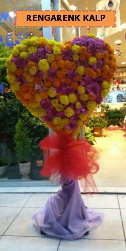 Ankara mevsim çiçeklerinden kalp perförje  Kıbrıs çiçek , çiçekçi , çiçekçilik