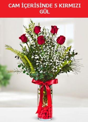 Cam içerisinde 5 adet kırmızı gül  Kıbrıs çiçekçiler