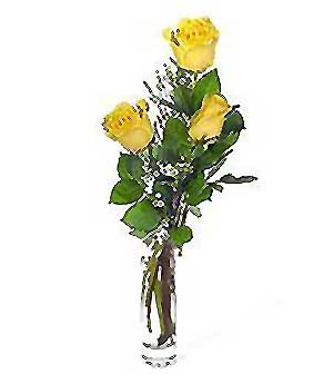 Kıbrıs online çiçek gönderme sipariş  3 adet kalite cam yada mika vazo gül