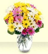 Kıbrıs online çiçek gönderme sipariş  mevsim çiçekleri mika yada cam vazo