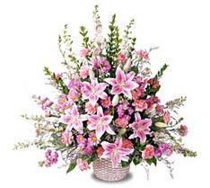 Kıbrıs çiçekçiler  Tanzim mevsim çiçeklerinden çiçek modeli