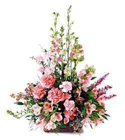 Kıbrıs çiçekçi mağazası  mevsim çiçeklerinden özel
