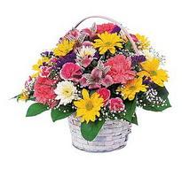 Kıbrıs hediye çiçek yolla  mevsim çiçekleri sepeti özel