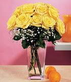 Kıbrıs internetten çiçek siparişi  9 adet sari güllerden cam yada mika vazo