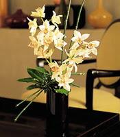 Kıbrıs çiçek siparişi vermek  cam yada mika vazo içerisinde dal orkide