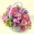 Kıbrıs çiçek yolla , çiçek gönder , çiçekçi   bir sepet dolusu kir çiçegi  Kıbrıs çiçek gönderme