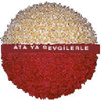 arma anitkabire - mozele için  Kıbrıs çiçek gönderme