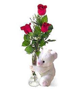 oyuncak ve 3 adet gül  Kıbrıs çiçekçiler