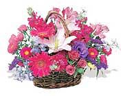 küçük karisik özel sepet   Kıbrıs çiçek mağazası , çiçekçi adresleri