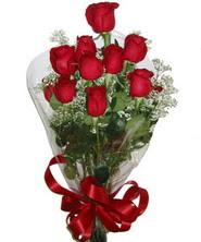 9 adet kaliteli kirmizi gül   Kıbrıs İnternetten çiçek siparişi