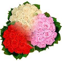 3 renkte gül seven sever   Kıbrıs hediye çiçek yolla