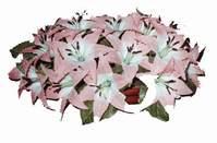 yapay karisik çiçek sepeti   Kıbrıs internetten çiçek satışı