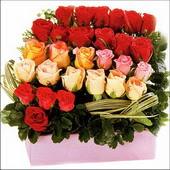 15 adet renkli gül ve cam   Kıbrıs internetten çiçek satışı