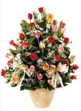91 adet renkli gül aranjman   Kıbrıs çiçek gönderme