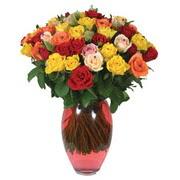 51 adet gül ve kaliteli vazo   Kıbrıs çiçek gönderme