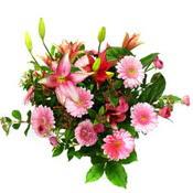 lilyum ve gerbera çiçekleri - çiçek seçimi -  Kıbrıs çiçek satışı
