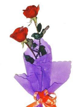 2  adet kirmizi gül buketi   Kıbrıs hediye çiçek yolla