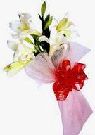 Kıbrıs hediye çiçek yolla  ince vazoda gerbera ve ayi