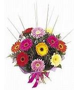 karisik gerbera çiçekleri  Kıbrıs çiçekçi telefonları