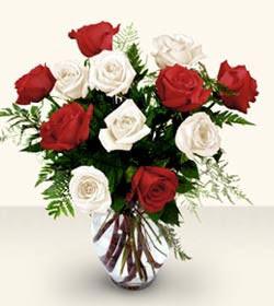 Kıbrıs anneler günü çiçek yolla  6 adet kirmizi 6 adet beyaz gül cam içerisinde
