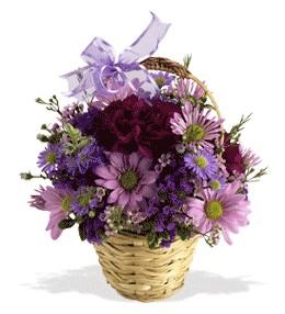 Kıbrıs anneler günü çiçek yolla  sepet içerisinde krizantem çiçekleri