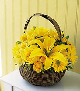 sepet içerisinde sarinin sihri  Kıbrıs 14 şubat sevgililer günü çiçek