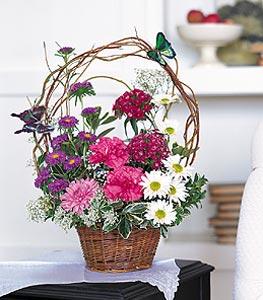 Kıbrıs 14 şubat sevgililer günü çiçek  sepet içerisinde karanfil gerbera ve kir çiçekleri