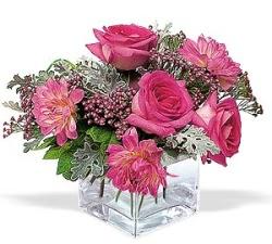 Kıbrıs 14 şubat sevgililer günü çiçek  cam içerisinde 5 gül 7 gerbera çiçegi