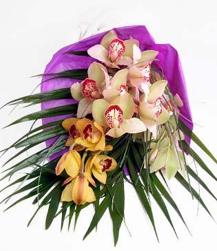 Kıbrıs 14 şubat sevgililer günü çiçek  1 adet dal orkide buket halinde sunulmakta