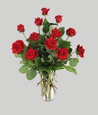 Kıbrıs 14 şubat sevgililer günü çiçek  11 adet kirmizi gül vazo halinde