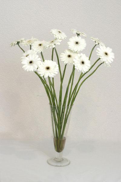 Kıbrıs güvenli kaliteli hızlı çiçek  cam vazo içerisinde 17 adet sade gerbera
