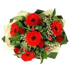 Kıbrıs çiçekçi mağazası   5 adet kirmizi gül 5 adet gerbera demeti