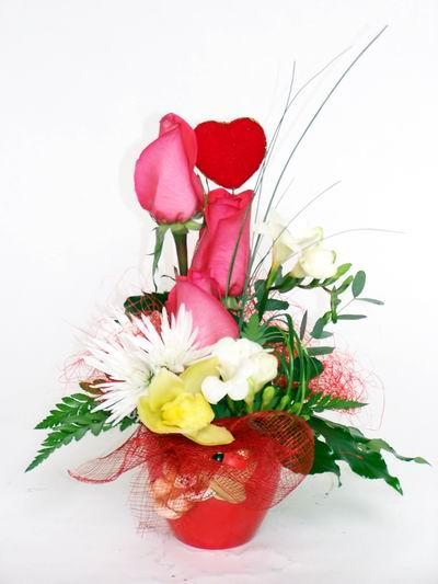 Kıbrıs çiçekçi mağazası  cam içerisinde 3 adet gül ve kir çiçekleri