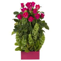 12 adet kirmizi gül aranjmani  Kıbrıs güvenli kaliteli hızlı çiçek