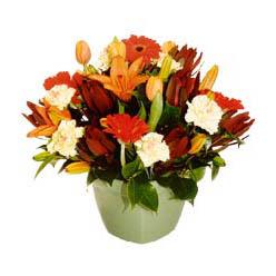 mevsim çiçeklerinden karma aranjman  Kıbrıs çiçek gönderme sitemiz güvenlidir