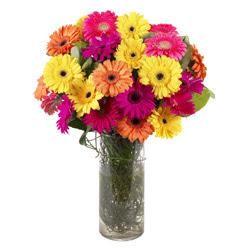 KARISIK GERBERALARDAN CAM VAZO TANZIMI  Kıbrıs online çiçekçi , çiçek siparişi