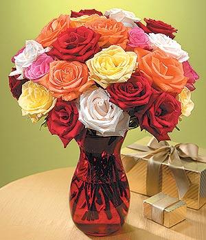Kıbrıs çiçek online çiçek siparişi  13 adet renkli gül