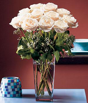 Kıbrıs çiçek servisi , çiçekçi adresleri  Cam yada mika vazo içerisinde 12 gül