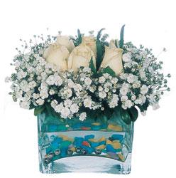 Kıbrıs internetten çiçek satışı  mika yada cam içerisinde 7 adet beyaz gül