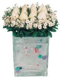 Kıbrıs internetten çiçek satışı  7 adet beyaz gül cam yada mika vazo tanzim