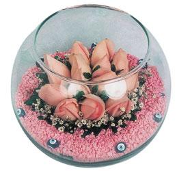 Kıbrıs internetten çiçek siparişi  cam fanus içerisinde 10 adet gül