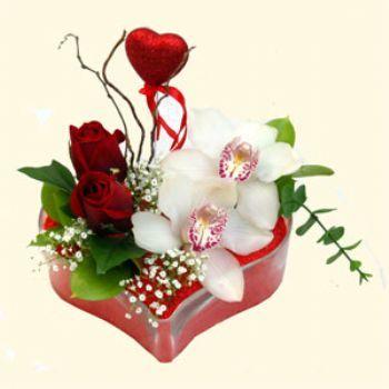 Kıbrıs çiçek servisi , çiçekçi adresleri  1 kandil orkide 5 adet kirmizi gül mika kalp