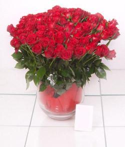 Kıbrıs uluslararası çiçek gönderme  101 adet kirmizi gül